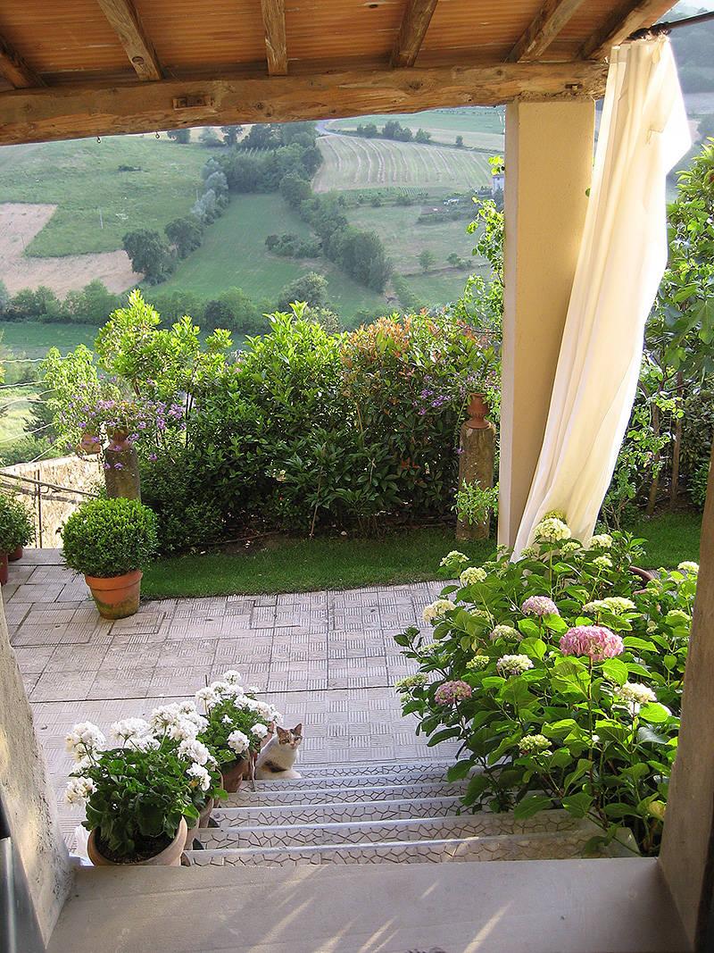 Excellent come decorare un giardino piccolo outdoor per un for Giardino piccolo progetto